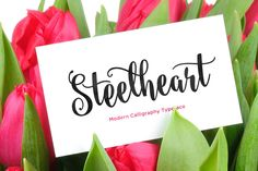 Steelheart font +42 other brush & script fonts, some free