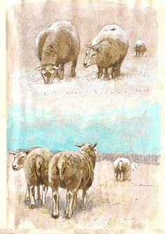 Sheep at the Zuidoostbeemster NL., wallnut-ink drawing by Co van Assema 2015