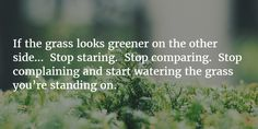 if the grass looks greener on the other side stop staring comparing - Google Search
