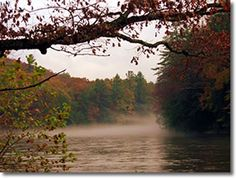 Cook Forest State Park, Clarion River, Pennsylvania, It is my place to connect with majesty, peace, stillness and beauty