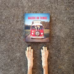 Maddie on Things, by Theron Humphrey