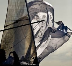 Boat Sails in the wind Louis Aragon, Blowin' In The Wind, Sail Away, Set Sail, Wooden Boats, Tall Ships, Sailing Ships, Sailing Yachts, Sailboat Yacht