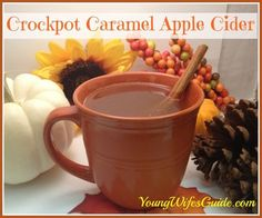 Autumn just wouldnt be complete without a big steaming mug of caramel apple cider! Here is the best recipe for CROCKPOT caramel apple cider! Apple Recipes, Fall Recipes, Holiday Recipes, Holiday Snacks, Christmas Snacks, Christmas Parties, Cozy Christmas, Family Christmas, Cocktails