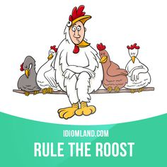 """""""Rule the roost"""" means """"to be the person who makes all the decisions in a group"""". Example: Jimmy might be the boss at work, but at home it's his wife who rules the roost."""