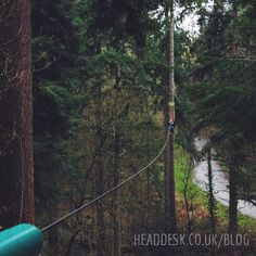 Heights really aren't my thing so when we were invited to @goapetribe last weekend I decided to keep my feet firmly on the ground but camera in hand... Check out our latest blog post to see some of the photos we got from our photographer's eye view on the ground - I love that this photo looks like I'm up in the trees with them! (Link in bio) ... #photography #photographer #canon #blogger #blog #instagraphicdesign #graphicdesigner #Travelphotography #naturephotography #bloggers #instablogger…