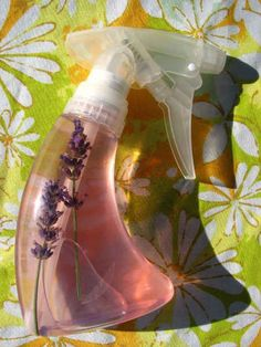 Make your own flea repellent.