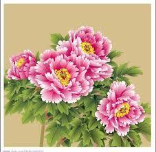 「牡丹花」的圖片搜尋結果