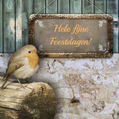 Een sfeervolle kerstkaart met een roodborstje en een krijtbord, verkrijgbaar bij #kaartje2go voor €1,89