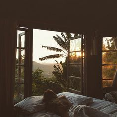 Imagine waking up to this! #LazySunday