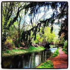 """Gorgeous view of the towpath in New Hope captured by @_lisah on Instagram as part of our """"Capture Your #BucksCountyMoment"""" photo contest."""