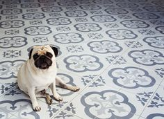 Advice on protecting new and original encaustic tiles - during installation and renovation projects