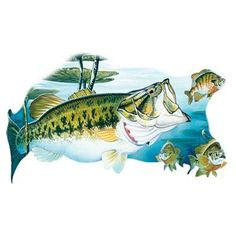 Large Mouth Bass Fish T Shirt M L XL 2XL by firelandsteeshirts, $14.99