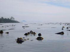 Quatsino Sound Sunshine Coast, Vancouver Island, Idaho, Charlotte, Canada, Camping, Sea, Queen, Travel