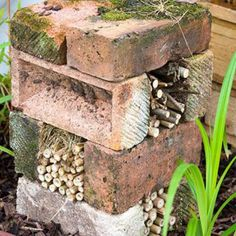 Build a Bug Hotel for Your Garden Guests - Muddy Ideas