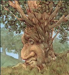 old tree spirit