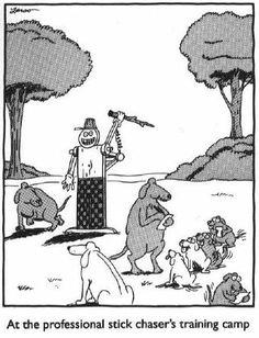 The Far Side comics by Gary Larson stick chaser's training camp Cartoon Jokes, Cartoon Dog, Funny Cartoons, Funny Comics, Funny Jokes, Hilarious, Far Side Cartoons, Far Side Comics, The Far Side Gallery