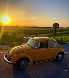 old english vintage cars , alte englische oldtimer old english vintage cars , Red old cars. Wedding old cars. Side View old cars Wolkswagen Van, Van Vw, Volkswagen, Yellow Car, Mellow Yellow, My Dream Car, Dream Cars, Photo Coccinelle, Bug Car