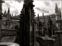 Sevilla - Catedral de Santa María. La Giralda.