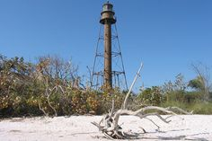 10 of the best attractions to visit in Fort Myers. #SWFL #travel