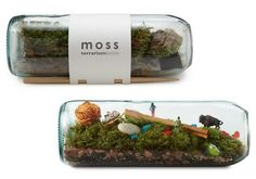 To know more about UncommonGoods MOSS TERRARIUM BOTTLE, visit Sumally, a social network that gathers together all the wanted things in the world! Featuring over 35 other UncommonGoods items too! Closed Terrarium Plants, Gold Terrarium, Large Terrarium, Water Terrarium, Terrarium Ideas, Moss Art, Mini Bonsai, Large Plants, Pergola Kits