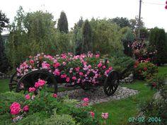 Obraz: Kwitnące Ogrody - Firma ogrodnicza
