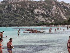 La Corsica è una terra da vivere, il mio consiglio è quello di andarci con la voglia di viaggiare, di esplorare e percorre kilometri nel silenzio totale tratteggiato da alberi mastodontici e secolari che costellano una terra cruda, selvaggia