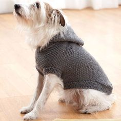 10 Stunning Examples Of Beautiful Fall Dog Sweaters - Free Knitting Patterns - Handy Little Me Knitted Dog Sweater Pattern, Dog Coat Pattern, Knit Dog Sweater, Sweater Knitting Patterns, Knit Patterns, Free Knitting, Free Crochet, Knitting Scarves, Hooded Sweater