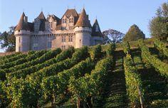Chateau Monbazillac & vineyard, Bergerac, Bordeaux, France (© Siffert, Hans-Peter/the food passionates/Corbis)