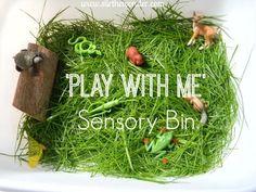 'Play with Me' Sensory Bin - Stir The Wonder