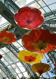 paper umbrellas by cdbeowulf, via Flickr    Flowers adorn large paper umbrellas hanging from the ceiling at the Bellagio