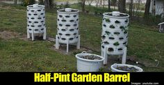 If you love to garden but find yourself with limited space available then the Half-Pint Homestead Garden Barrel just might be a solution you are looking for. Related Reading: How To Grow Amazing Vegetables Easily With Cheap Plastic Buckets Using a standard 55 gallon plastic drum and... #spr #sum