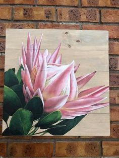 Protea Art, Protea Flower, Painting Lessons, Painting & Drawing, Watercolor Flowers, Watercolor Art, Acrylic Painting Canvas, Canvas Art, Floral Drawing