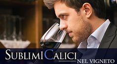 Sublimi Calici nel Vigneto: cofanetto viaggi con degustazione vini pregiati.