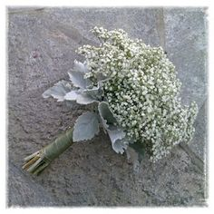 Gypsophilia and Dusty Miller. very much like. might need a pop of color...