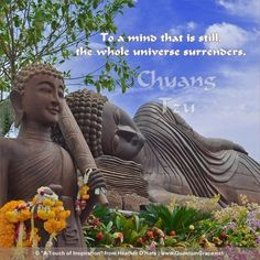 """To a mind that is still, the whole universe surrenders."" —Chuang Tzu www.QuantumGrace.net ..*"