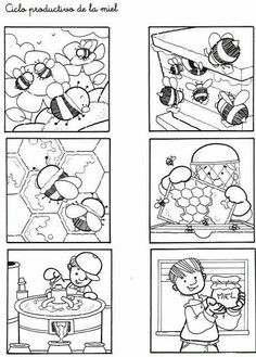 Secuencias Temporales para recortar y colorear! Bees For Kids, Story Sequencing, Bee Crafts, Picture Story, Bugs And Insects, Bee Happy, Life Cycles, Bee Keeping, Colouring Pages