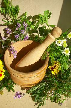 Herbs:  Mortar & pestle with fresh herbs.
