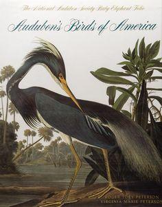 N.H. - Audubon's Birds of America