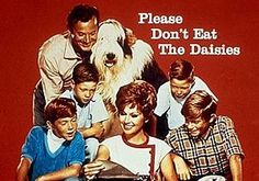 269 Best Television Shows The 60 S Images Old Tv Shows