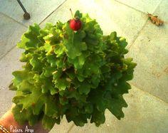 Albero di Natale fatto di foglie. Christmas Tree fatto di foglie