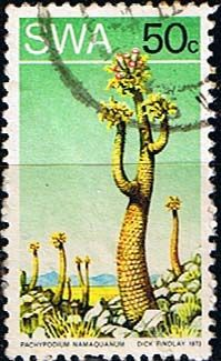 South West Africa 1973 SG 255 Succulents    Fine Used    SG 255 Scott 357a Other Flower stamps here