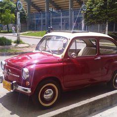 Brillo natural ☀ #topolino #igersitalia #oldcar #oldstyle #soloparking #finnycar #fiat750 #findyoufiat #fiat500 #fiat750 #fiat #classiccarsdaily #classiccars #classicsnow #colours #vintagefiat #vintagecar #vintage500 #my500 #micarronodesfilaseexhibe #vivecolombia #pasto #colombia #nariño