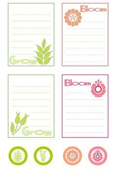 Bloom&grow