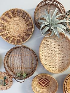 DIY Home Decor example 5267578130 – A superlative touch for a nice space. For ex… – What is Thrifted Home Decor? Thrifted Home Decor Tips & Tricks Plant Basket, Basket Decoration, Baskets On Wall, Home Interior, Interior Design, Air Plants, Bohemian Decor, Home Decor Inspiration, Thrifting