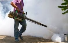 If you want a professional pest control service to get rid of the mosquitoes that are causing Chikungunya and dengue, then rely on TechSquadTeam to get the highest standard of service. Mosquito Control, Pest Control Services, Mosquitoes, Rid, Group, Book, Book Illustrations, Books