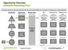 Image result for herbalife marketing plan