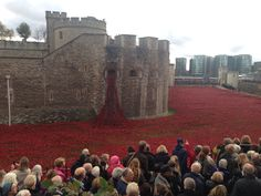 Tower of London - Remembrance Day