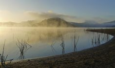 Lake Hodges mist (near San Diego)