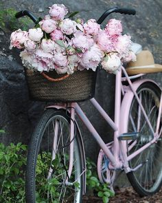 So beautiful! Peonies remind me of my childhood. So beautiful! Peonies remind me of my childhood. Deco Champetre, Bike Photography, Bicycle Art, Bicycle Shop, Bicycle Design, Old Bikes, Everything Pink, Vintage Bicycles, Prom Pictures