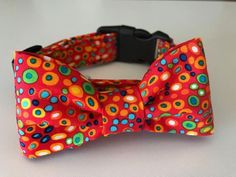 Dog Collar with Matching Bow Tie